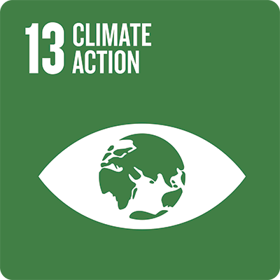 Sustainable development goal: Climate action
